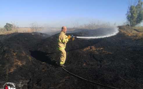 טרור הבלונים נמשך: לפחות 42 שריפות פרצו בעוטף עזה מהבוקר