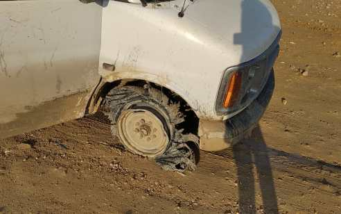 הטרור החקלאי: עדר נגנב בהר חברון – בעלי העדר יצאו לחיפושים ואיתרו את העדר בכפר ערבי