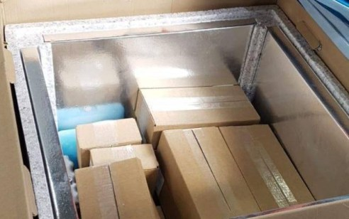 באישור ישראל: משלוח 1,000 חיסוני קורונה נכנסו מהרשות לעזה
