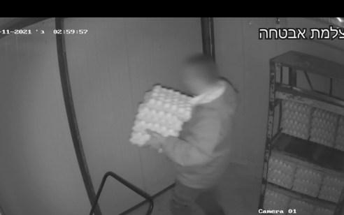 צפו: פרץ ללול של שכנו במושב דלתון וגנב 4,830 ביצים למטרות רווח כספי