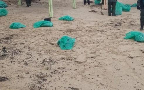 """מעל 750 טון פונו: המשרד להגנת הסביבה הסיר את מצב החירום מ""""זפתבסערה"""""""