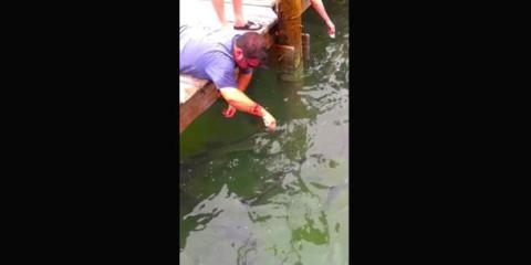 Ένας άνδρας ψάρευε ήρεμα, όταν συνέβη κάτι τρελό