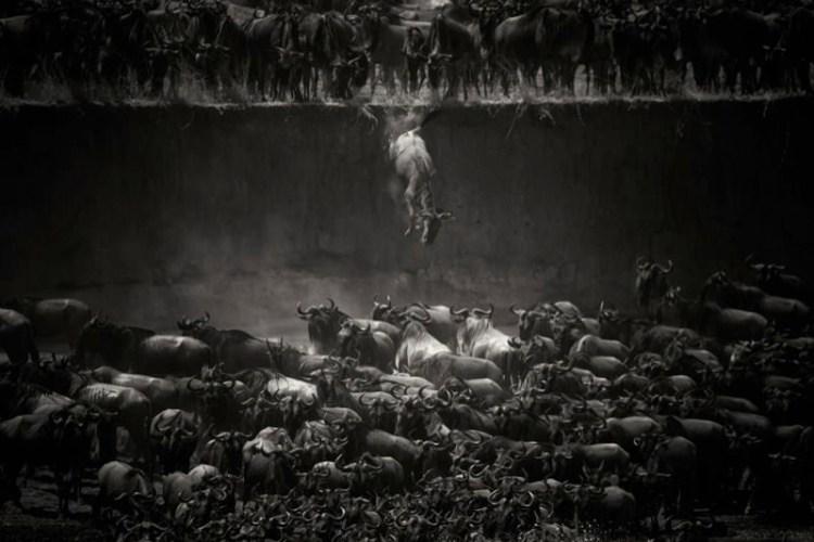 καλύτερες φωτογραφίες National Geographic allabout.gr