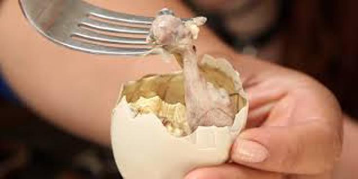 Balut παράξενα φαγητά από όλο τον κόσμο