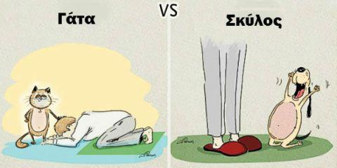 Oι διαφορές ανάμεσα σε ένα σκύλο και μία γάτα