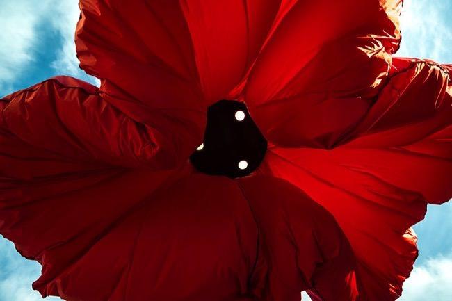 Οι λάμπες λουλούδια που «ανθίζουν» όταν βρίσκονται άνθρωποι από κάτω!