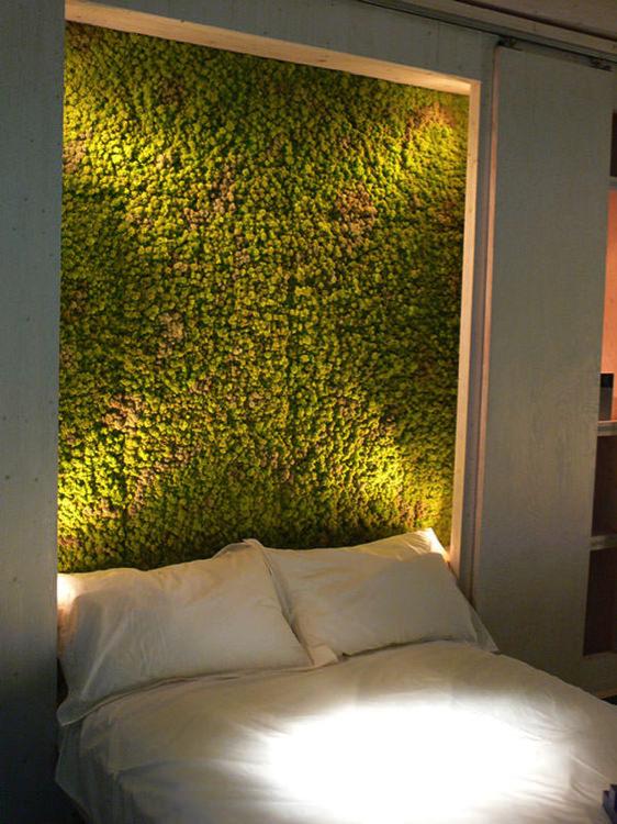 Πράσινοι τοίχοι φέρνουν τη φύση στο σπίτι!
