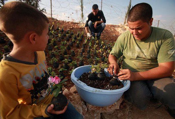Παλαιστίνη μαζεύει τις Ισραηλινές χειροβομβίδες 3