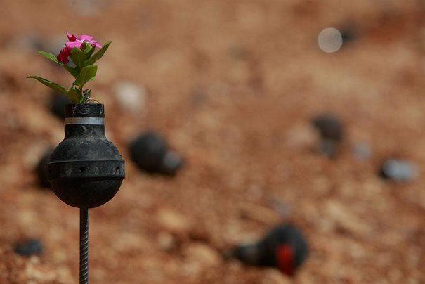 Παλαιστίνη μαζεύει τις Ισραηλινές χειροβομβίδες 6