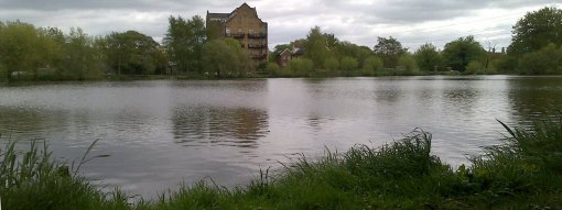 Looking across the fishing lake in Addlestone