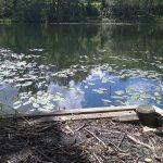 Manor Pond