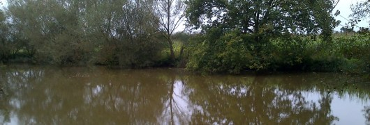 A view across the Prews Farm fishing lake in Send