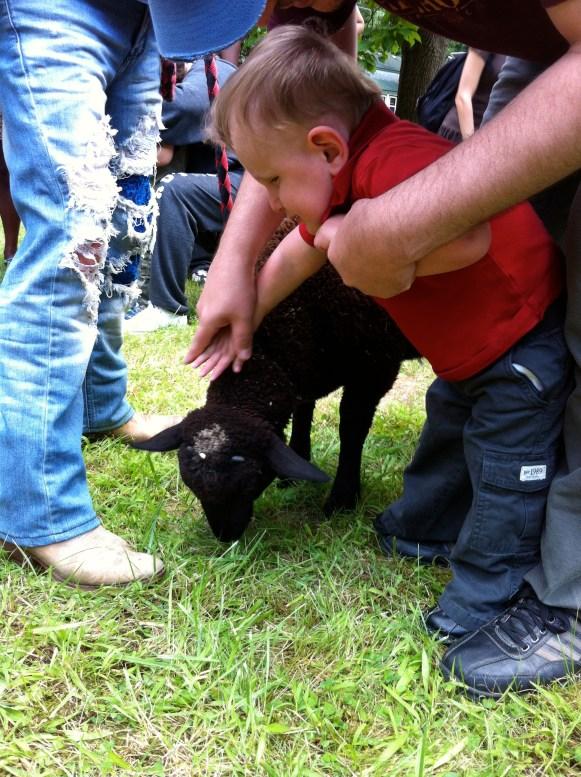 Ben pets a goat