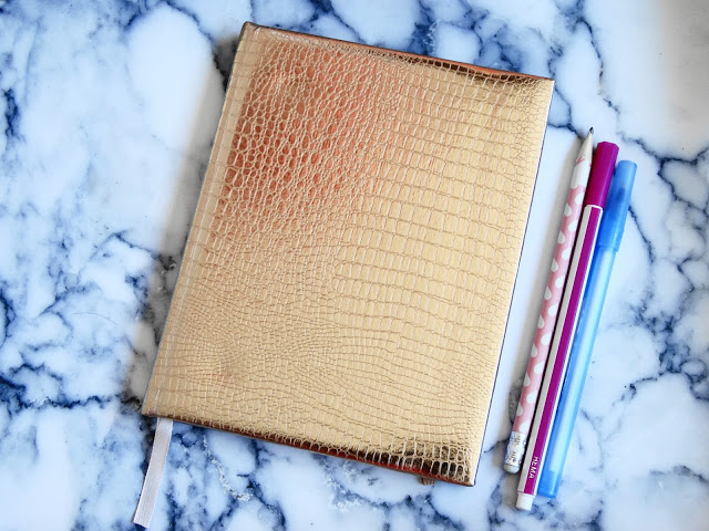 8084f dsc033482b252812529 - ROSE GOLD (SCHOOL) AGENDA