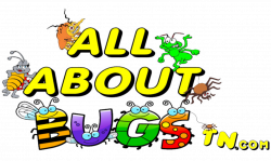 cropped-All-About-Bugs-TN-Com-Logo3-1.png