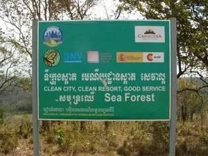 защита леса в камбодже