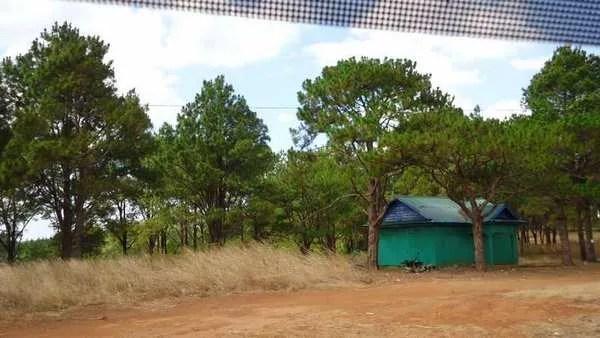 просторы камбоджи