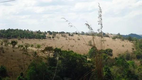 пустыни в камбодже