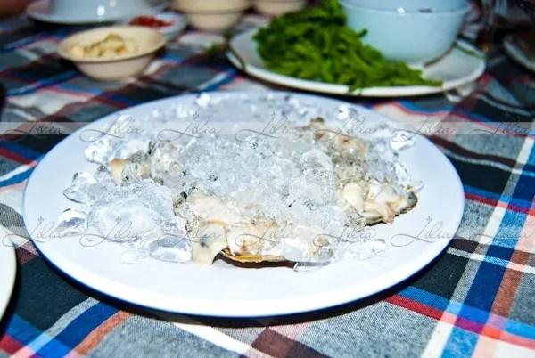 устрицы, морепродукты в камбодже
