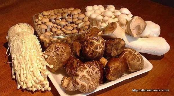 грибы в камбодже