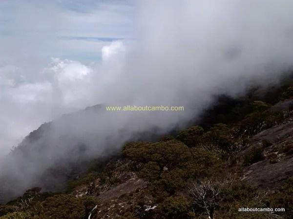 красивая природа борнео