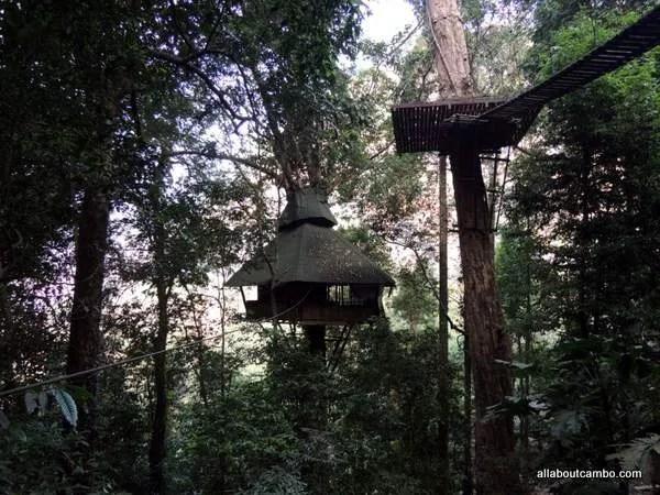 домик на дереве лаос