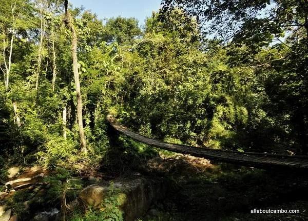 треккинг по джунглям