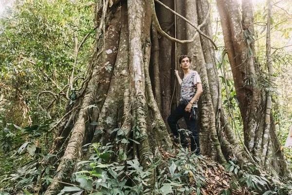 леса камбоджи