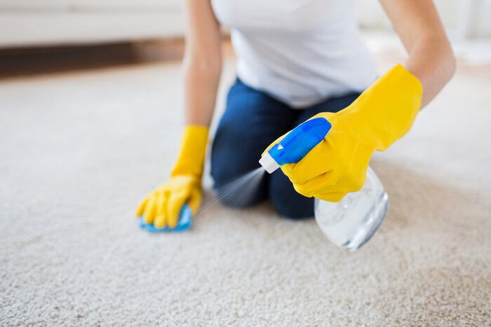 cleaning mess from carpet with a spray bottle