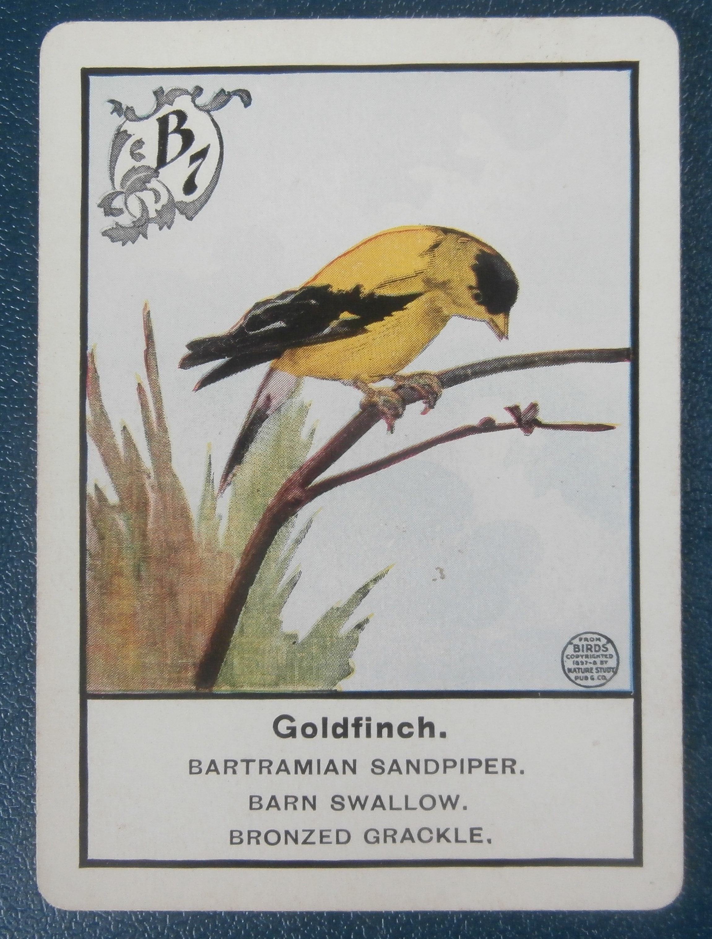 Old Parker Brothers Game Of Birds All About Fun And Games
