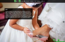 Artlook Inc Brooklyn Wedding Photographer