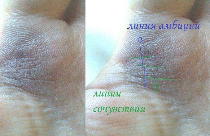 Знаки богатства на руке