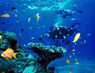This Gorgeous Mexican Island Should Be on Every Scuba Diver's Bucket List