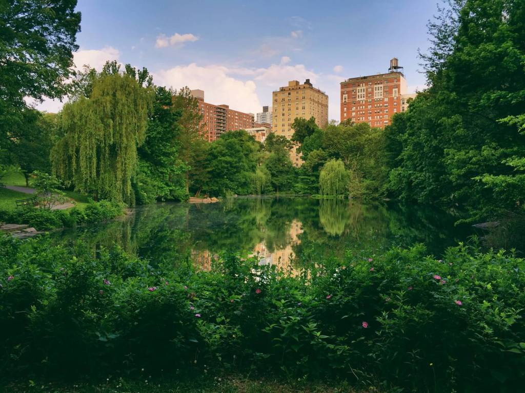 Spend your summer strolling around Central Park. Read more on www.allaboutrosalilla.com