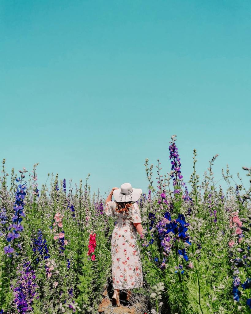 Woman standing in a Flower field in the Cotswolds