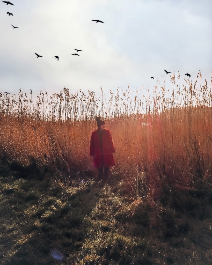 Woman in a red coat standing amongst the reeds at Lough Erne resort as birds fly overhead