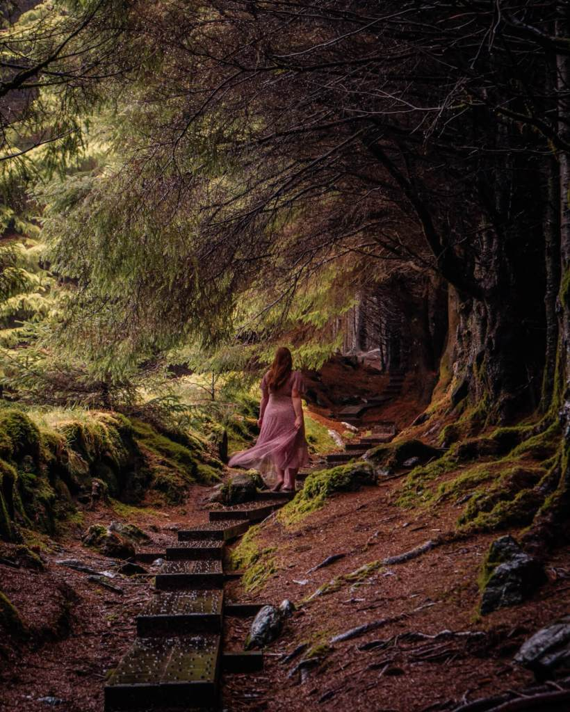 Woman in a purple dress walking through the magical forest in Ballinastoe woods in Wicklow Ireland