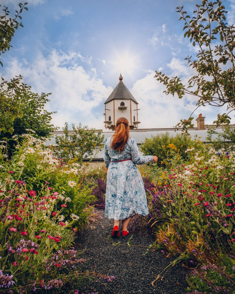 Woman in a blue dress walking in the floral gardens at Rothe house in Kilkenny Ireland