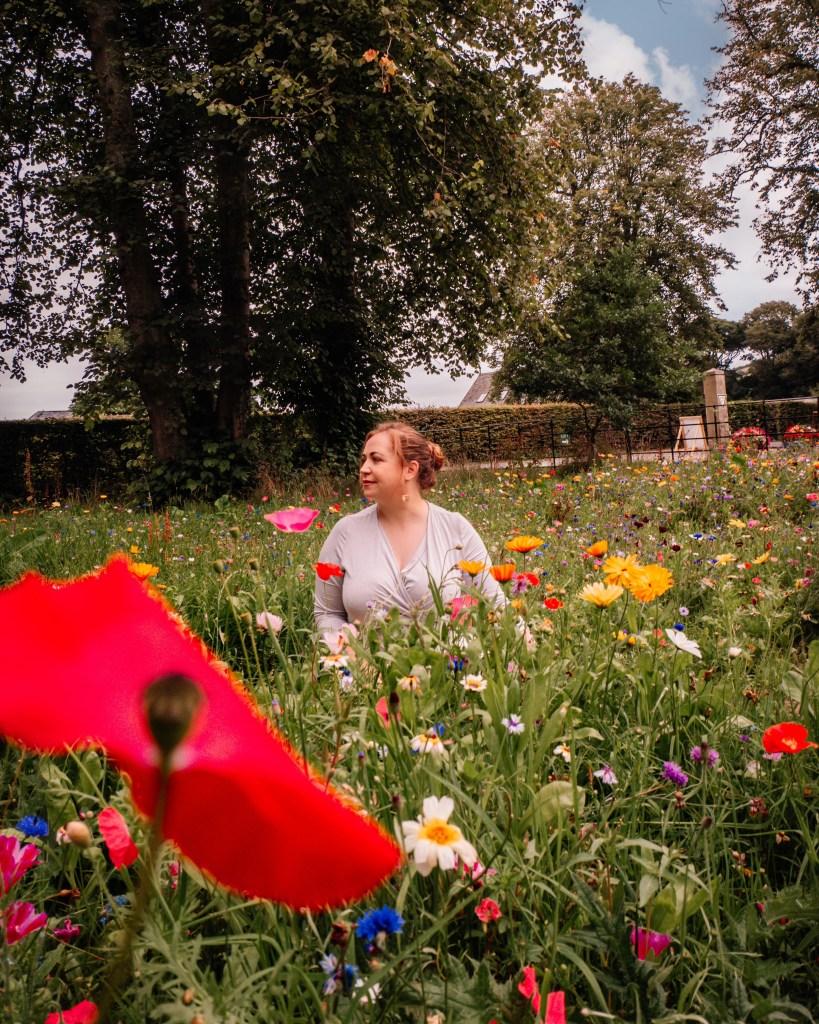 Wildflower garden at Glenarm Castle in Antrim