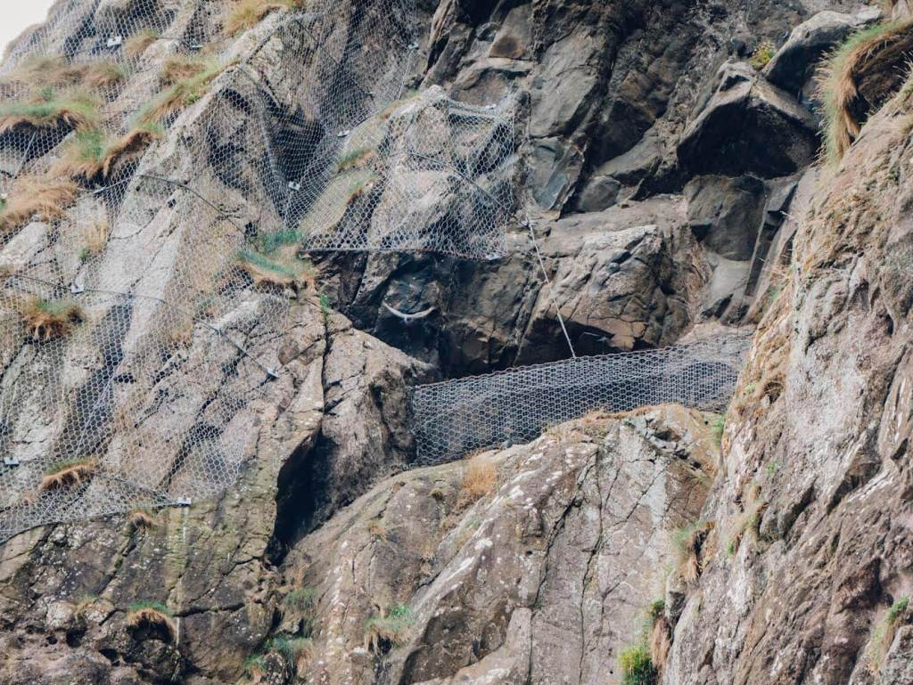 The Gobbins Cliff Path one of Antrim's hidden gems