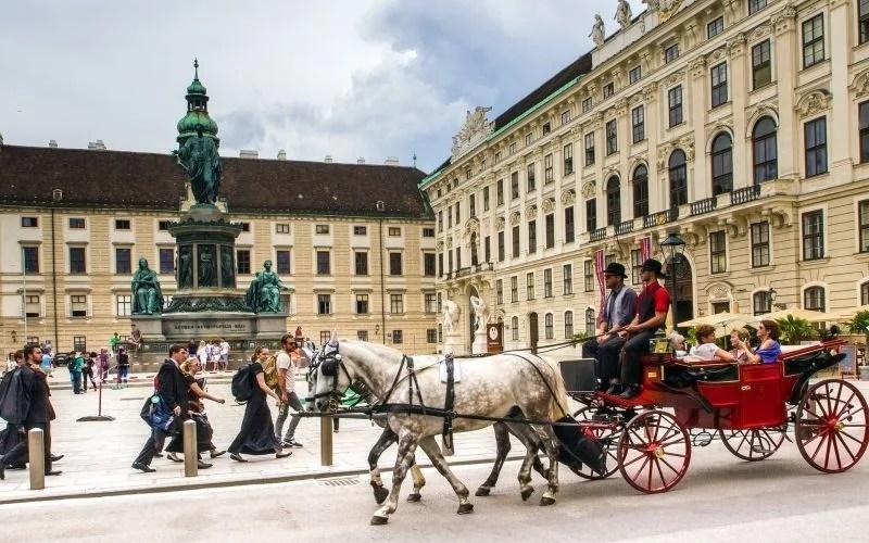 Vienna General Info