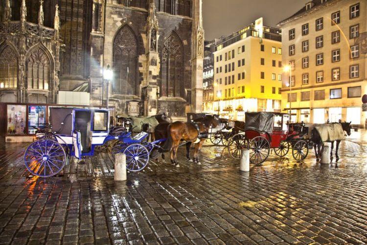 Stephansplatz horse driven carriage