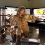 Anthropology3 - Natural History Museum Vienna