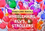 Wheelchair and stroller rentals
