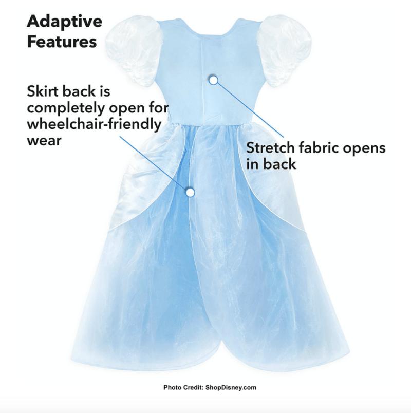 Cinderella costume adaptive