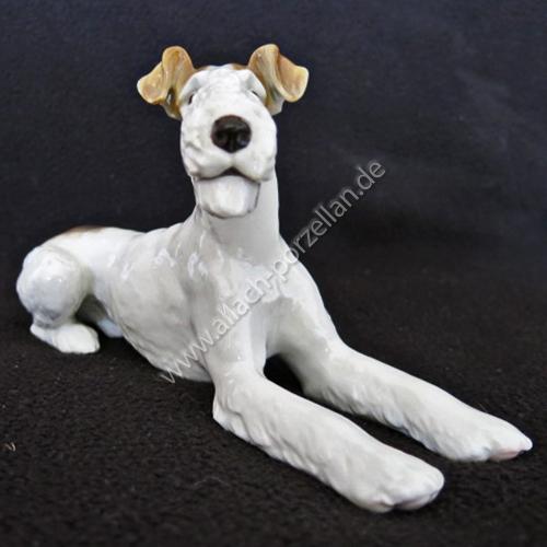 12 Fox Terrier lying, painted