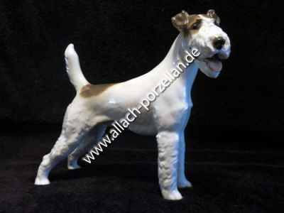 19 Fox Terrier standing, painted