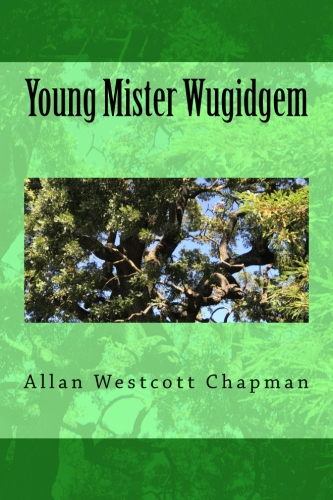 Young Mister Wugidgem BookCoverImage