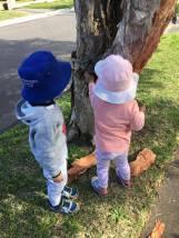AAFDC Paperbark Kids