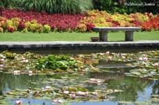 Parco Sigurtà 31